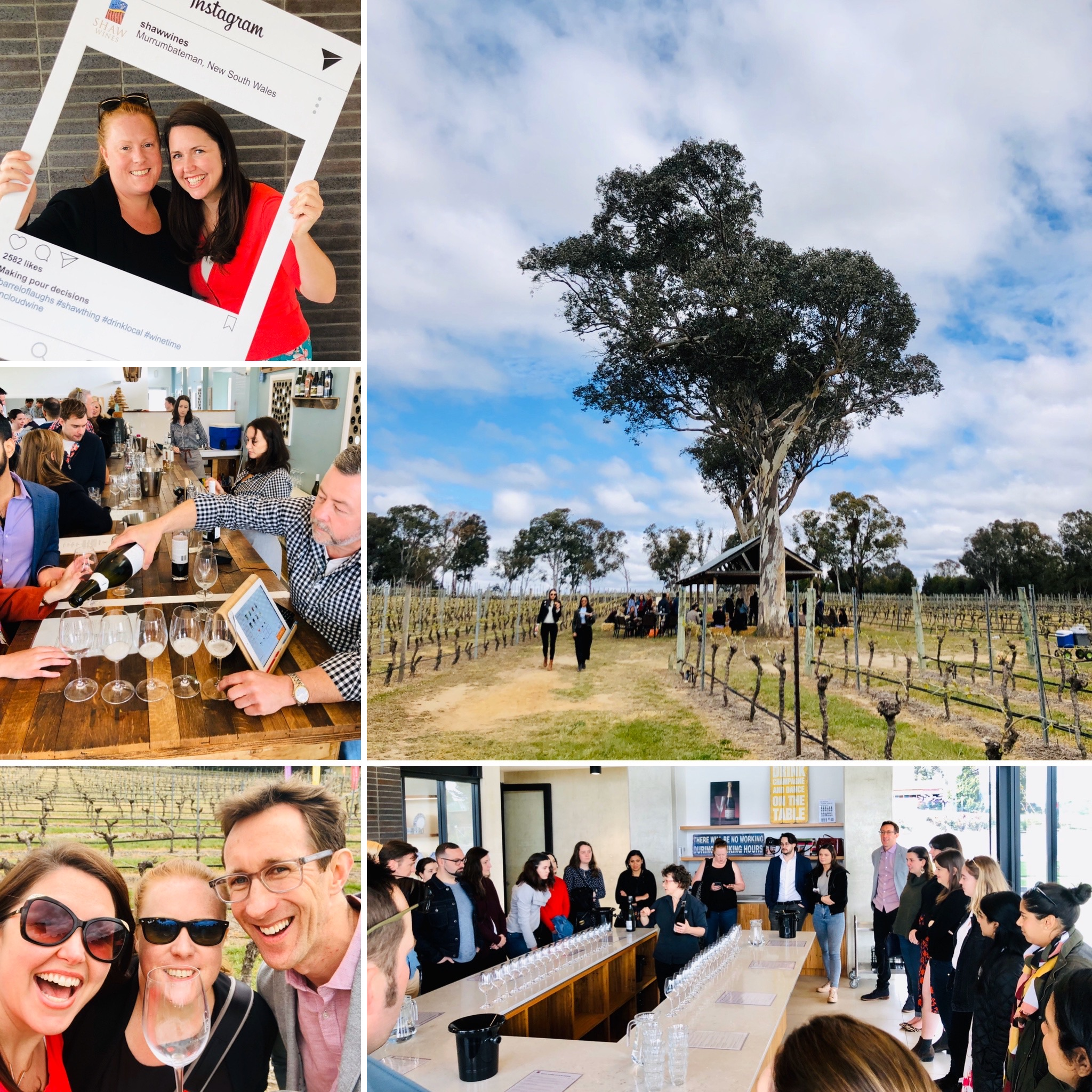 ACT Law Society Wine Tasting Day 2019